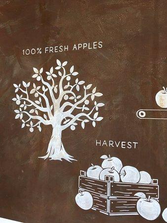 Pickering Brook, Australia: Processing apples diagram