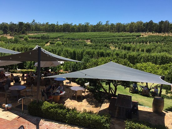 Pickering Brook, Australien: View from the restaurant