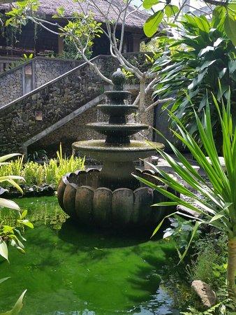 Nefatari Exclusive Villas: 20170112_103906_large.jpg