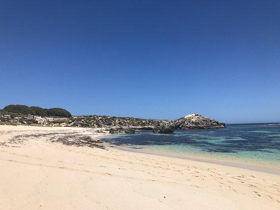 Νησί Rottnest Φωτογραφία
