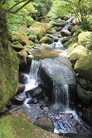 Bay of Plenty Region, Yeni Zelanda: running water