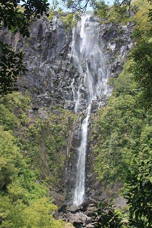 Bay of Plenty Region, Yeni Zelanda: the falls
