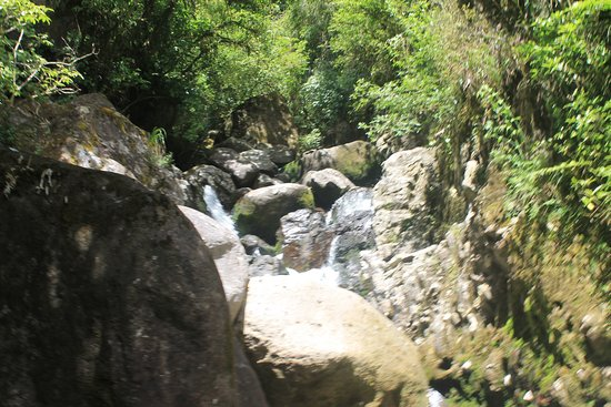 Bay of Plenty Region, Yeni Zelanda: jump the rocks