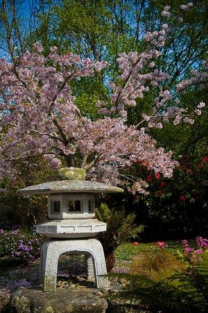 Invercargill, Neuseeland: Japanese gardens