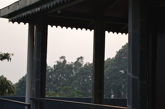 Pangot ภาพถ่าย