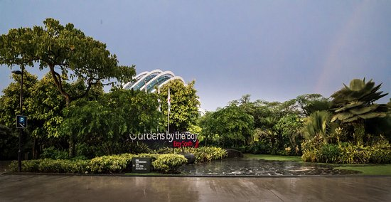supertree grove the adjoining area and entrance to gardens by the bay