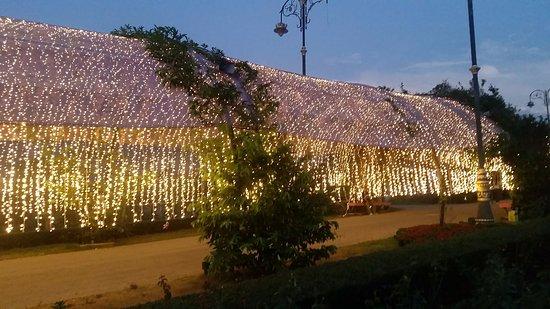 Pak Chong, Thailand: The garden