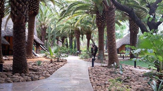 Omaruru, Namibia: The gardens
