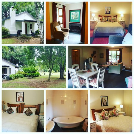 Hogsback, South Africa: Sunbird cottage at Maylodge