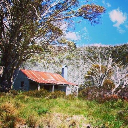 Jindabyne, Australien: photo0.jpg