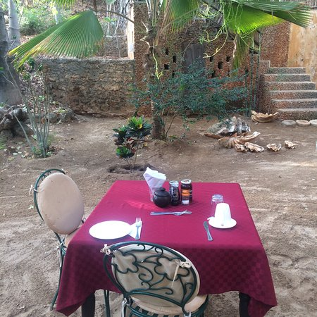 Fatuma's Tower: Breakfast in the tropical garden.