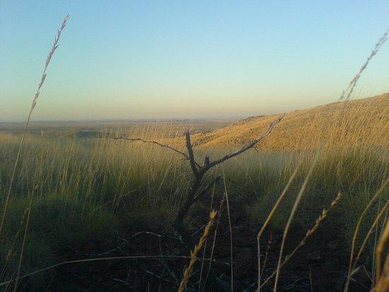 Looking North over Karratha