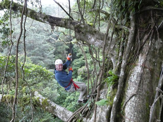 The Ultimate Adventure - The Original Canopy Tour & The Ultimate Adventure - Review of The Original Canopy Tour ...