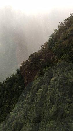 Fiordland National Park, Nueva Zelanda: photo8.jpg