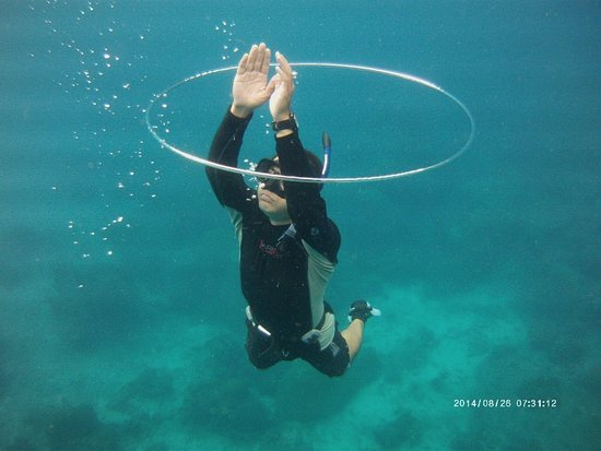 Master Divers: Freediving Bubblering Fun