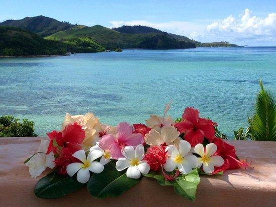 Musket Cove Island Resort: View from Villa Malolo