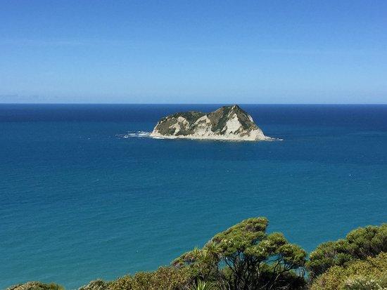 Gisborne, Nuova Zelanda: Panorama