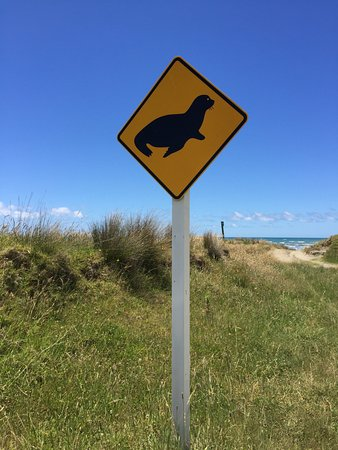Gisborne, Nuova Zelanda: Lungo la strada