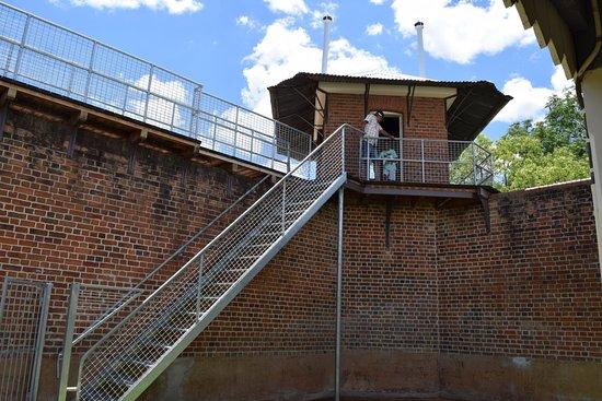 Dubbo, Australia: Watch Tower