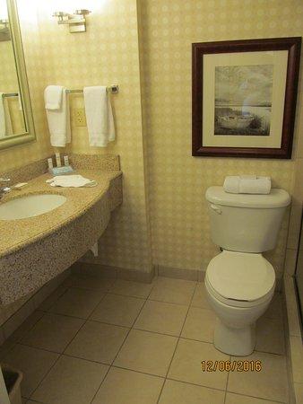 Book Hilton Garden Inn Savannah Midtown Georgia
