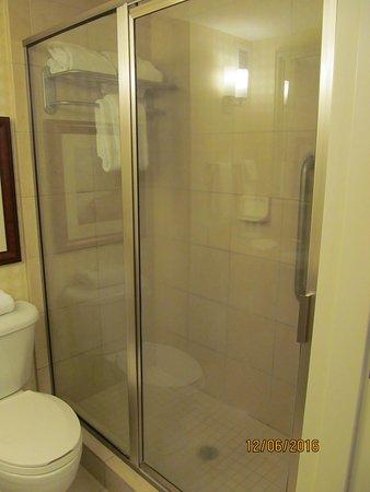Hilton Garden Inn Savannah Midtown   UPDATED 2017 Prices U0026 Hotel Reviews  (GA)   TripAdvisor