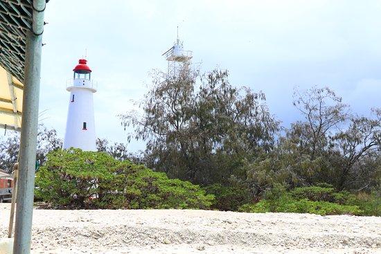 Νησί Lady Elliot Φωτογραφία