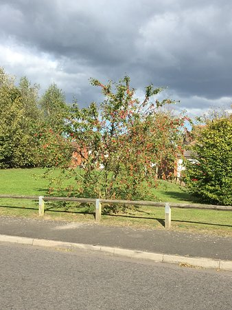 Marston Green, UK: photo3.jpg