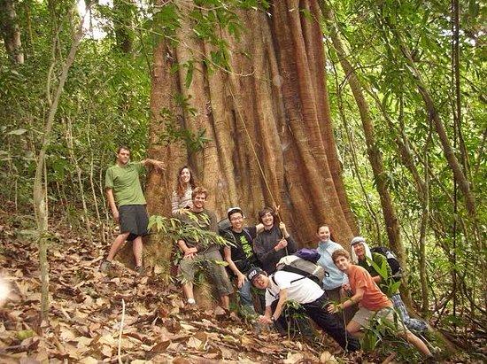 Luang Namtha, Laos: The jungle camp Adventure trek in NamHa NPA
