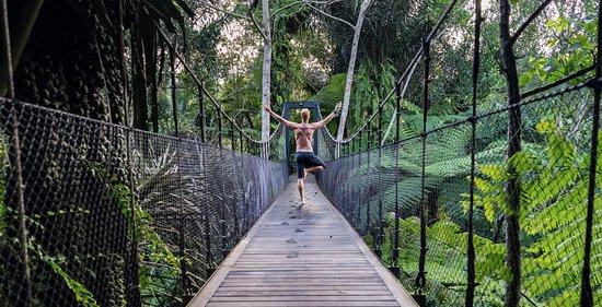 Selemadeg, Indonesia: Alassari Treetop suspension bridge