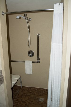 Comfort Inn & Suites: Roll-In Shower