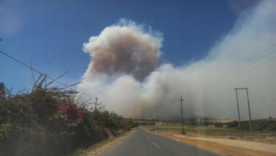 Wellington, Sudáfrica: Devastating fires in the Cape Winelands. Many farms have been destroyed and the Havequa Forest i