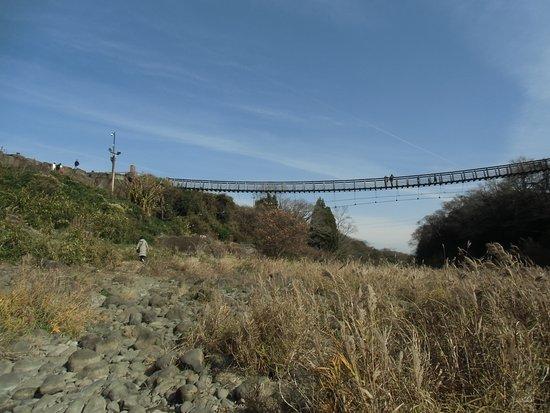 Bungoono, Japan: 滝の反対に架かる橋