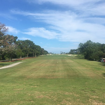 The Golf Courses of Palmetto Dunes: photo0.jpg
