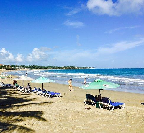 Cabarete Palm Beach Condos : The beach