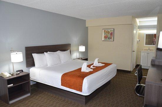 Days Inn & Suites Orlando Airport: Standard Guestroom
