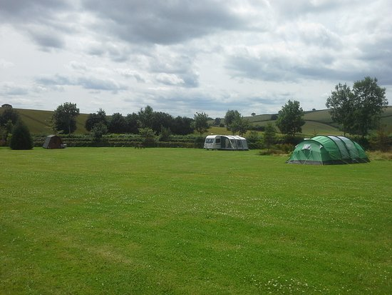 Craven Arms, UK: pod 5, caravan on side grass electric hook up and tent on non electric pitch