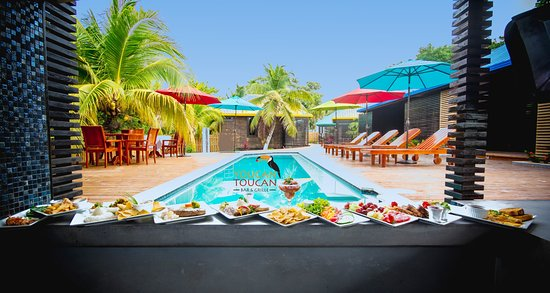 Youcan Toucan Bar & Grille Picture