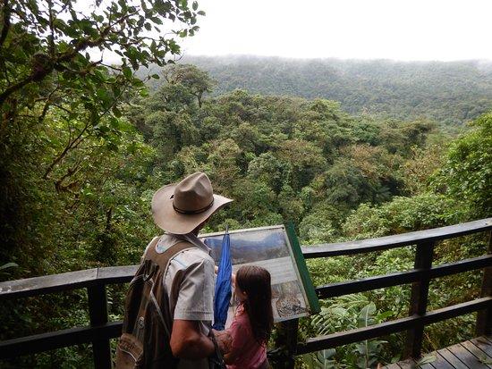 Tenorio Volcano National Park, Costa Rica: mirador hacia el volcán tenorio