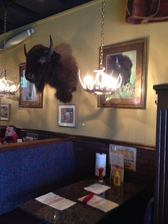 Hopkinton, MA: Of course there is a Bison