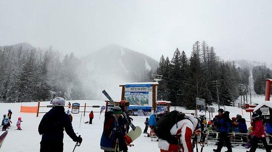 Fernie Alpine Resort: Deer Chair