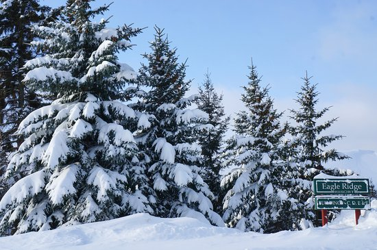 Avg. snowfall in Lutsen: 10 feet per year!