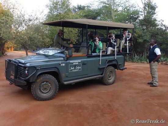 Madikwe Game Reserve, Republika Południowej Afryki: Foto-Safari