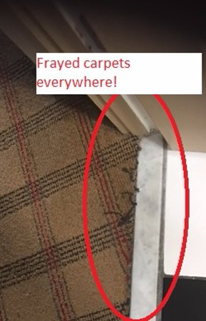 Four Points by Sheraton Orlando International Drive: Frayed carpets at thresholds