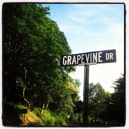 New Tripoli, Pennsylvanie : Grape Vine Drive