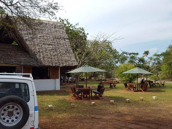 Wild Living Cafe: bar esterno con ombrelloni