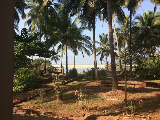 Kannur Beach House: the view from our veranda of the garden and the beach beyond
