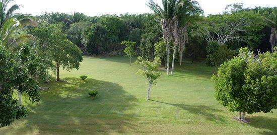 Quintana Roo, México: les jardiniers s'amusent....