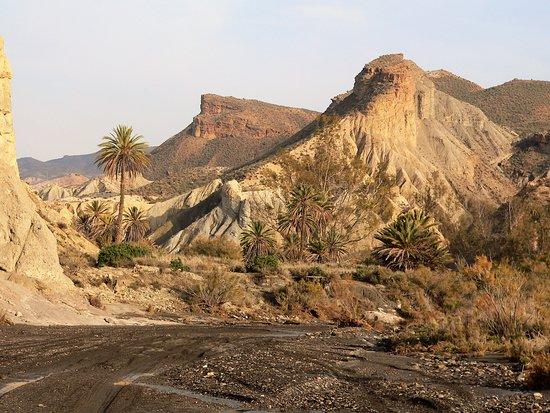 Provincia de Almería, España: Die Wüste lebt!