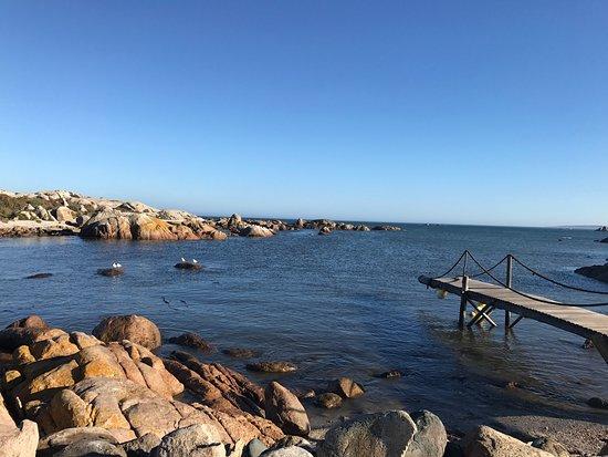 Sea Shack