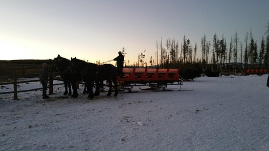 Fraser, CO: Our evening sleigh ride. Just magical!